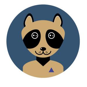 Freelancer Money Flow Raccoon